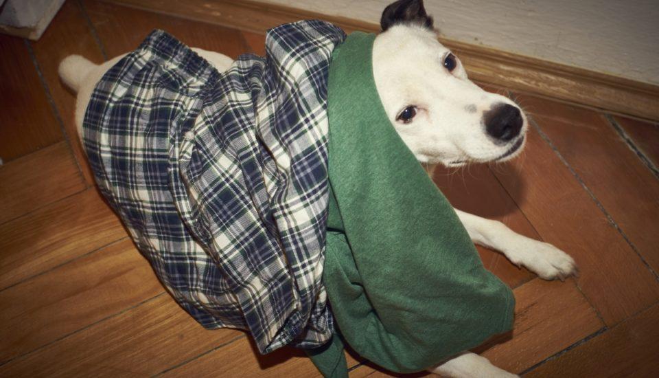 Trauma zodkládání pyžama, když ho nosím