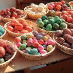 Tipy na velikonoční výpravy