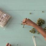 Zlepšovák: Jak se naučit jíst hůlkami