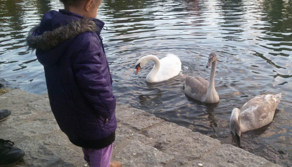 Tipy, jak namotivovat děti jít ven