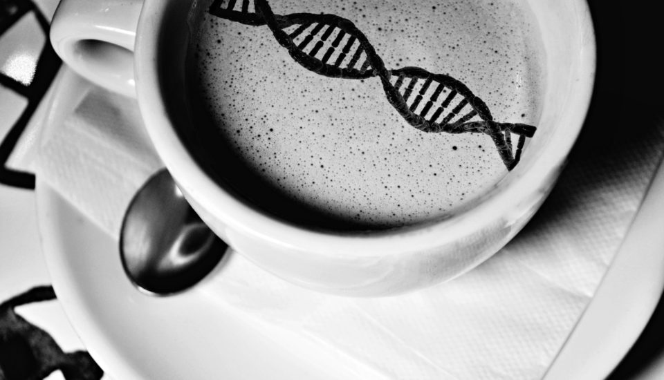 Kávou proti poruchám vDNA