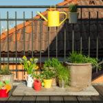 Jak si zařídit balkon plný bylinek