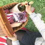 Pět kroků kdokonalému piknikovému koši