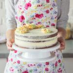 Pečení dortů pro začátečníky