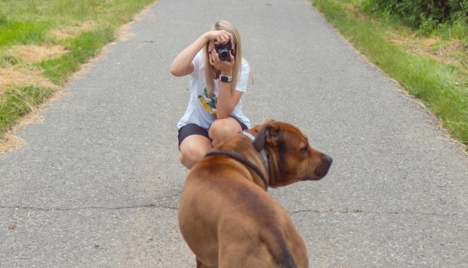 Vychytal jsem, jak fotit naše mazlíčky, aby jim to na fotkách vždycky slušelo