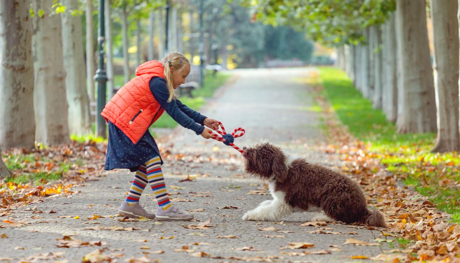 děti chtějí psa