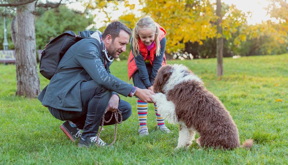 """""""Mami, já chci psa!"""" ‒ jak se vypořádat stímto dětským přáním?"""