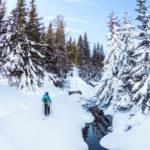 Zasněžené vrcholky hor ačistá hlava: Nechte se letos zlákat skialpami