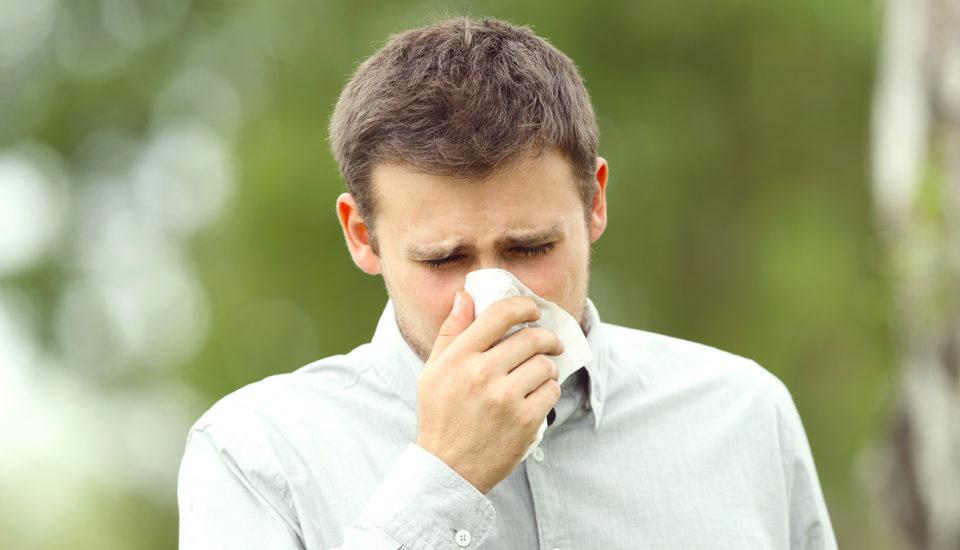 6 rad alergika, jak se neukýchat ksmrti