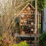 Vyrobte si hmyzí hotel! Parádní zábava pro malé ivelké, navíc prospěšná pro přírodu