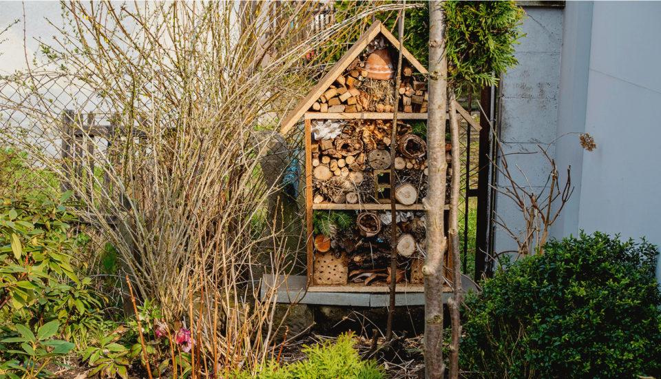 Vyrobte si hmyzí hotel! Zábava pro malé ivelké, prospěšná pro přírodu
