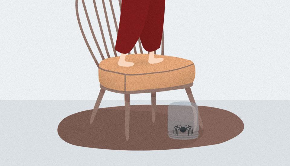 Proč máme strach zpavouků, ane zveverek? Psychoterapeut radí, jak to zvládnout